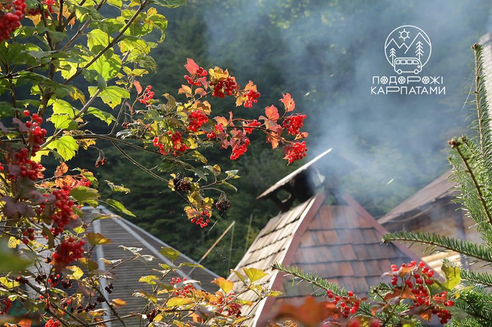 Отпуск в ноябре.<br> Теплый дымок Закарпатья.<br>