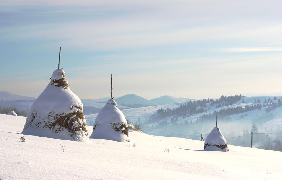 Декабрь.<br> 6 дней на Закарпатье.<br>