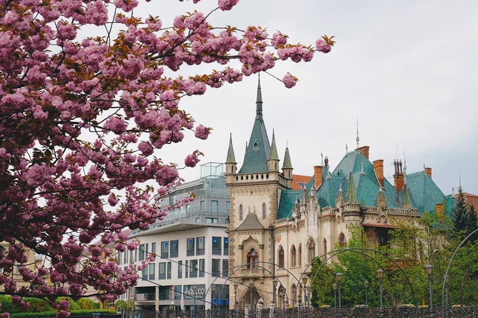 Европейская Весна.<br> Апрель 2020.<br>